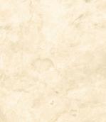 Vanilla (Ванилла)
